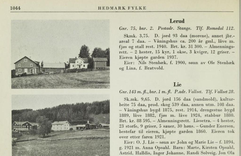 Lerud omtalt i Norske gårder