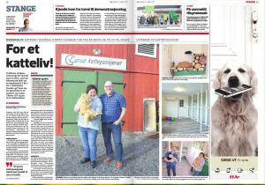 Omtale i Hamar Arbeiderblad