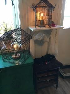 Fuglebur er blitt til fine lamper